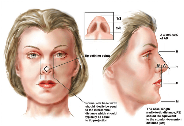Rhinoplasty Surgery Cost In India Best Nose Surgery In India